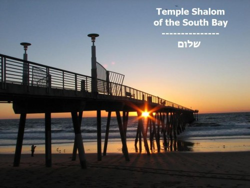 Welcome to Temple Shalom