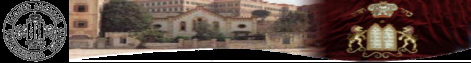 Logo for Maghen Abraham