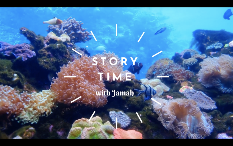 "<a href=""https://vimeo.com/400351108""