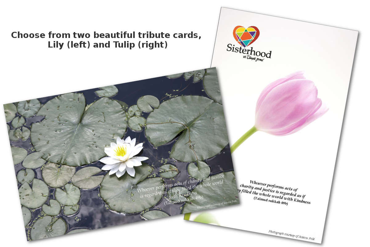 Temple Israel Sisterhood Tribute Cards - Lily and Tulip