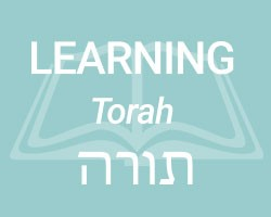 Learning (Torah)