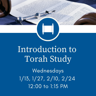 Banner Image for Introduction to Torah Study