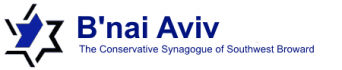 Logo for B'nai Aviv