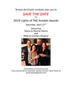 Save the Date for the 2019 Lights of TKE Avodah Awards!