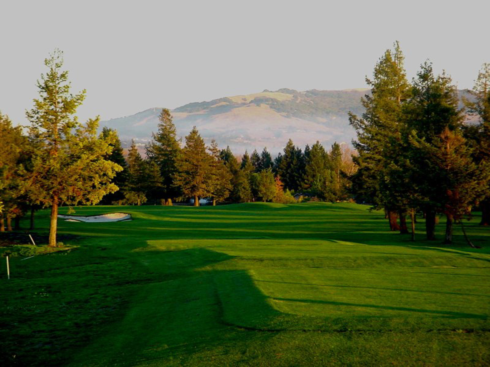 "<a href=""https://www.bnaiisrael.net/membership-giving/donate-support/golf-tournament""                                     target="""">                                                                 <span class=""slider_title"">                                     Golf Tournament                                </span>                                                                 </a>                                                                                                                                                                                       <span class=""slider_description"">Support BIJC at the 11th Annual Golf Tournament on Oct. 13 at Foxtail Golf Club.</span>                                                                                     <a href=""https://www.bnaiisrael.net/membership-giving/donate-support/golf-tournament"" class=""slider_link""                             target="""">                             Read More                            </a>"