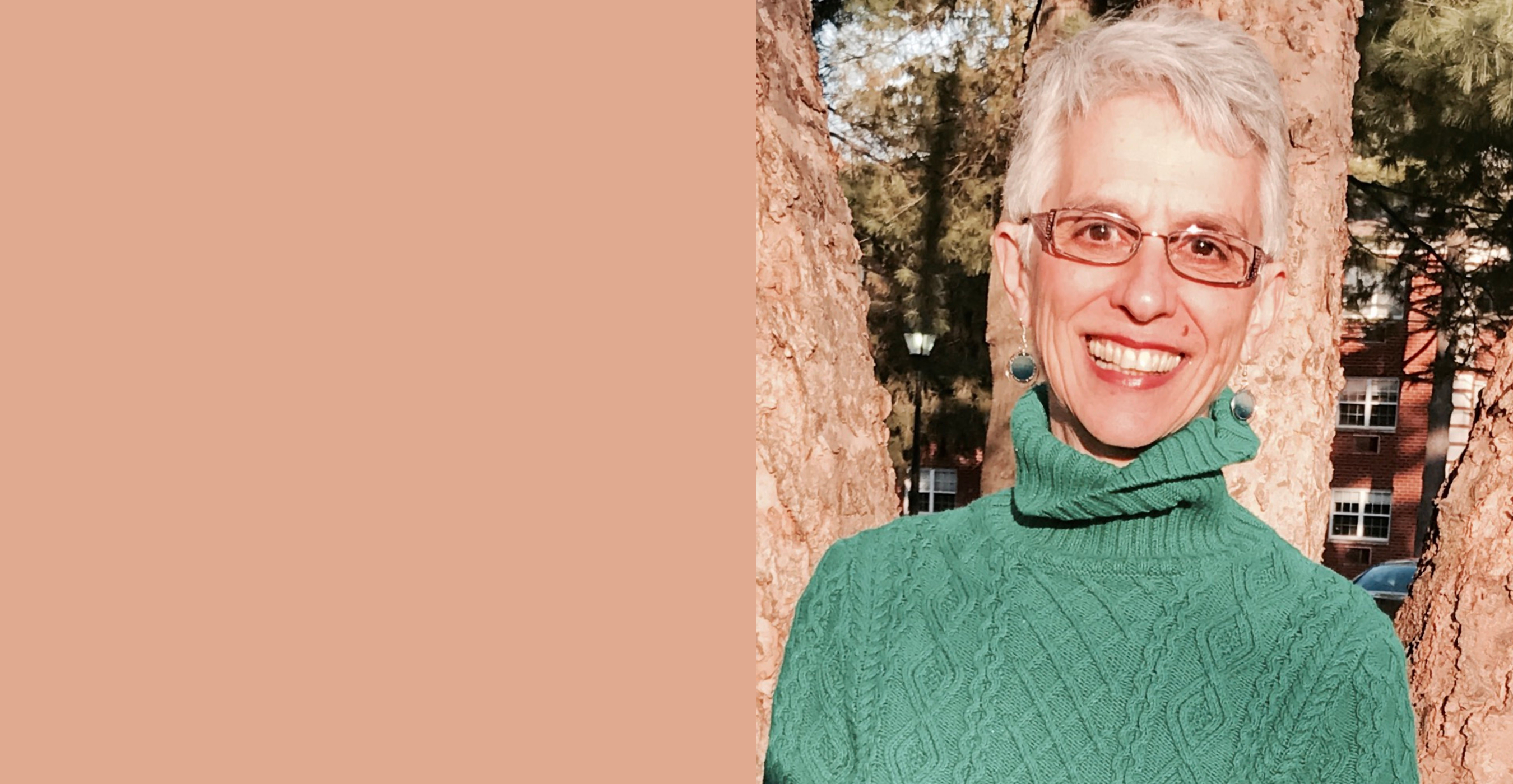 """<a href=""""https://www.beaconhebrewalliance.org/event/dialog-with-rabbi-sheila-peltz-weinberg.html""""                                     target=""""_blank"""">                                                                 <span class=""""slider_title"""">                                     Dialog with Rabbi Sheila Peltz Weinberg                                </span>                                                                 </a>                                                                                                                                                                                       <span class=""""slider_description"""">Thursday, November 21st, 6:00 PM - 8:00 PM  Join us for a very special evening with Rabbi Sheila Peltz Weinberg, one of the true pioneers of contemporary Jewish meditation practice. Register here.</span>"""