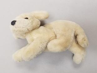 small stuffed dog