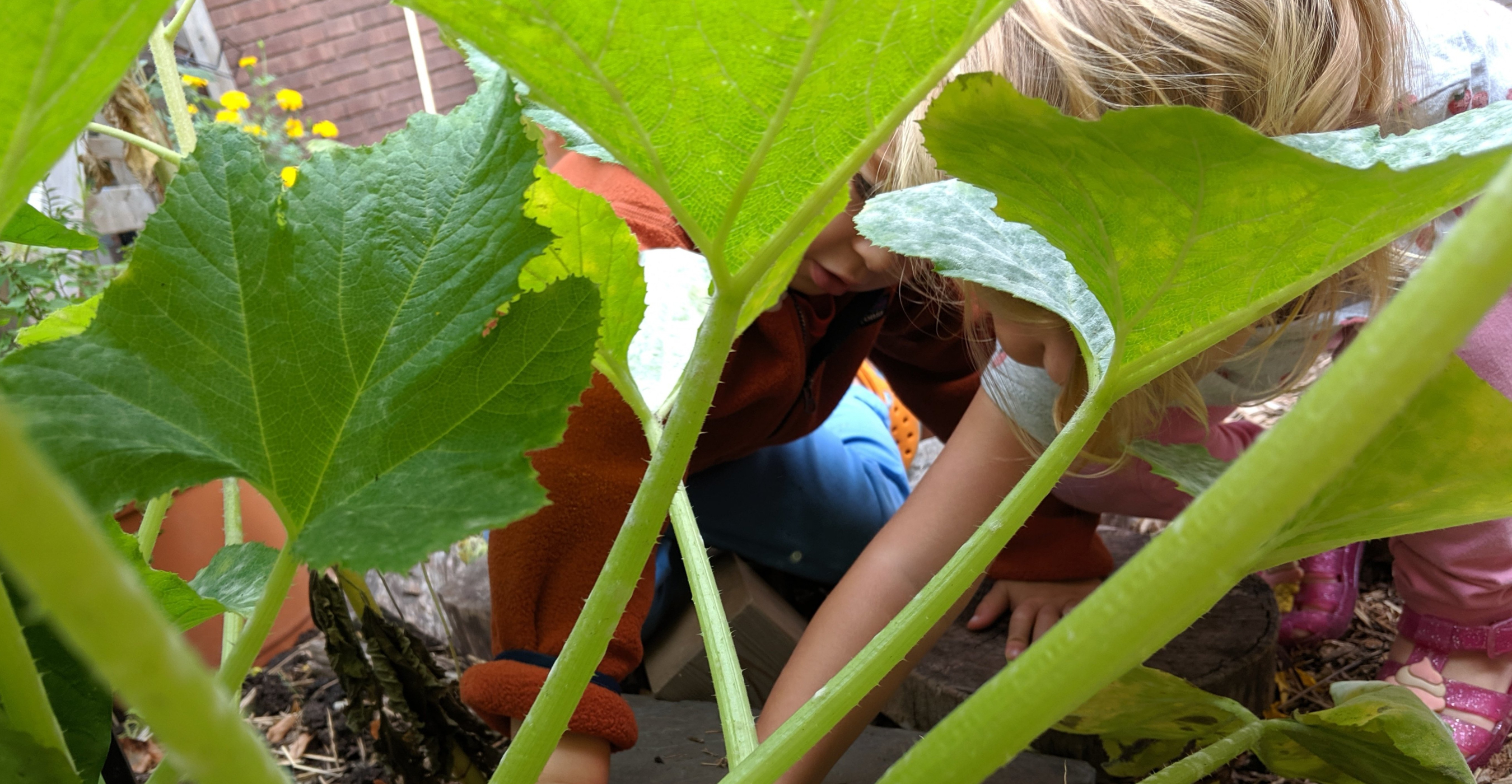 """<a href=""""https://www.beaconhebrewalliance.org/form/garden-camp-registration-2021.html""""                                     target=""""_blank"""">                                                                 <span class=""""slider_title"""">                                     Preschool Garden Camp                                </span>                                                                 </a>                                                                                                                                                                                       <span class=""""slider_description"""">Join BHA Preschool for Summer Garden Camp - a Jewish, nature-play program for 2-4 year olds.</span>                                                                                     <a href=""""https://www.beaconhebrewalliance.org/form/garden-camp-registration-2021.html"""" class=""""slider_link""""                             target=""""_blank"""">                             Register Now                            </a>"""