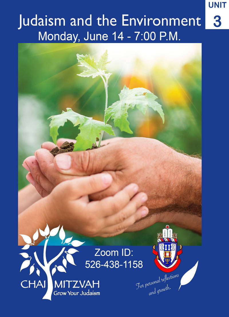 Banner Image for Chai Mitzvah Program - Unit 3: Judaism and the Environment