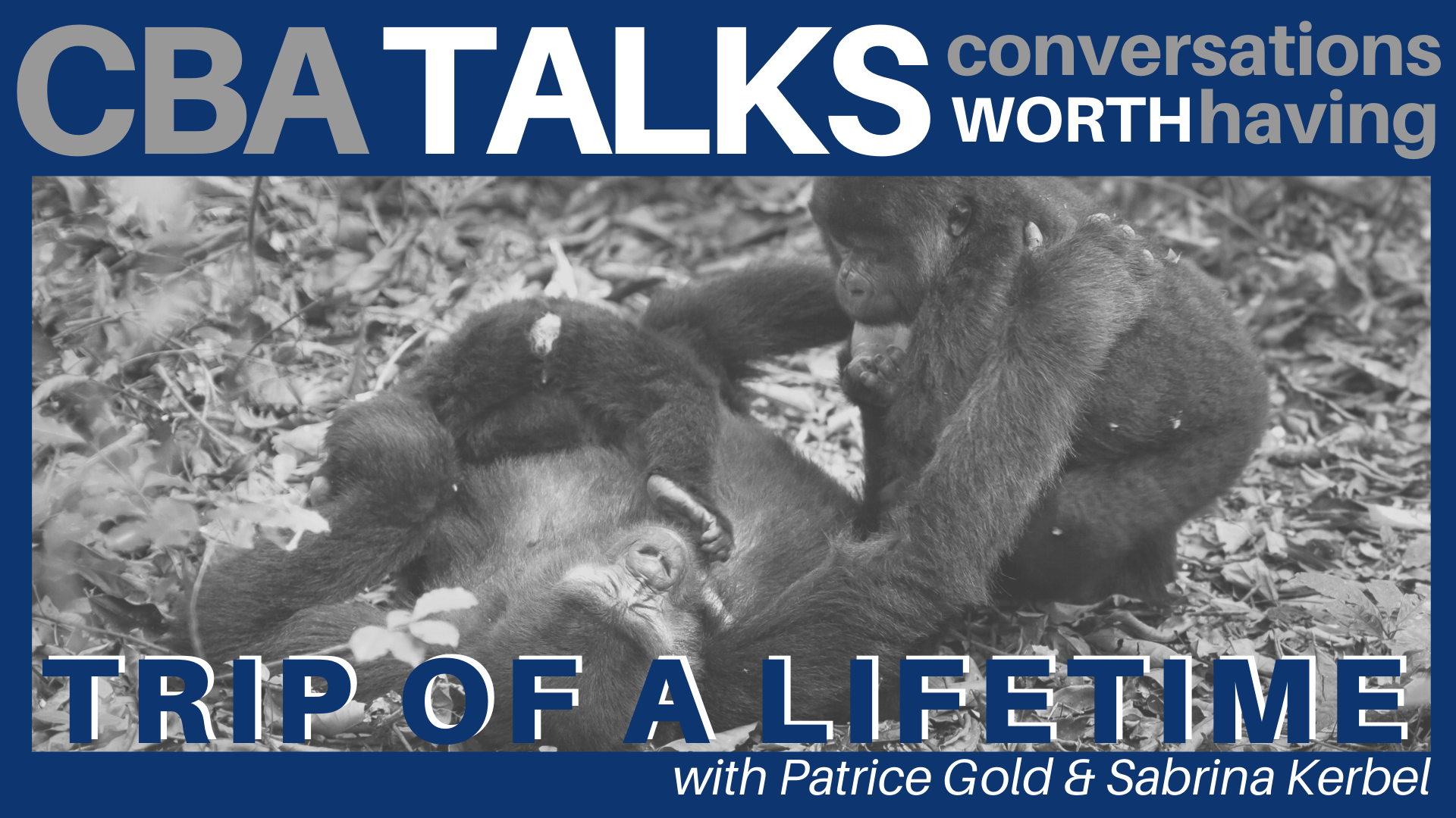 Banner Image for CBA Talks: A Trip of A Lifetime