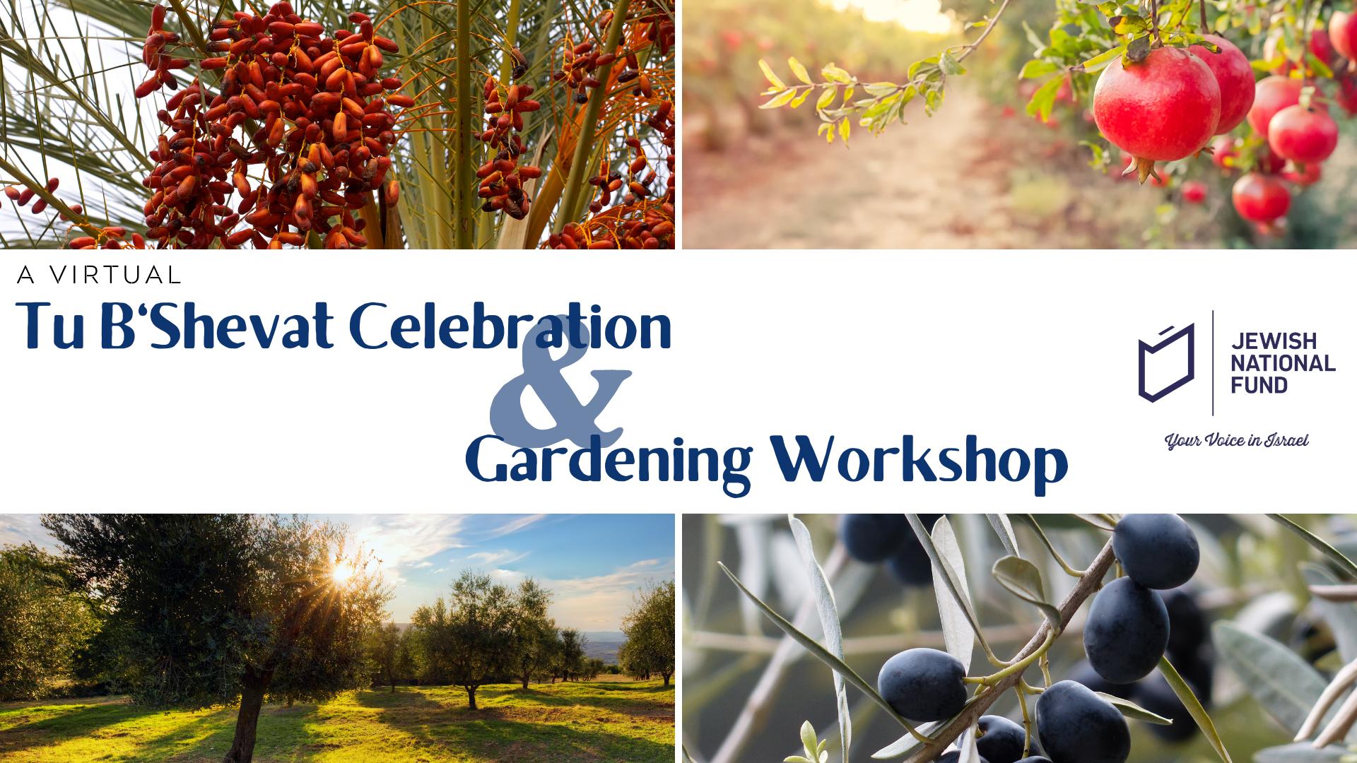 Banner Image for JNF: Tu B'Shevat Virtual Celebration & Gardening Workshop