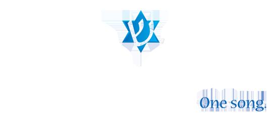 Shir Ami Footer Logo
