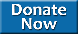 Temple Sholom Greenwich CT Donation Form Donate Now Button