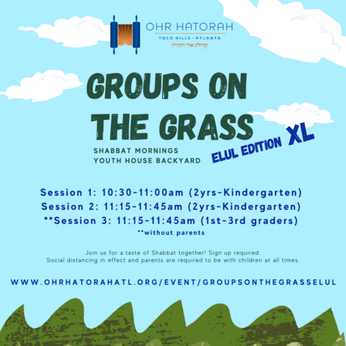 Banner Image for Groups on the Grass