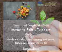 Banner Image for Trees and Seeds of Hope Interactive Family Tu'bshvat Program
