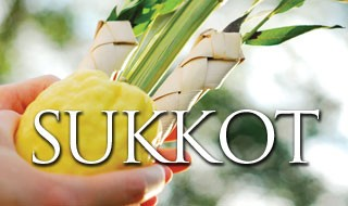 "<a href=""https://www.cgoh.org/""