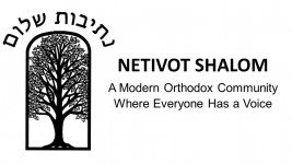 Logo for Netivot Shalom