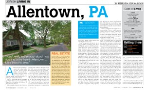 Ami Magazine article