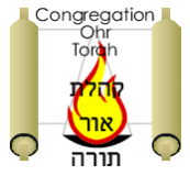 Logo for Congregation Ohr Torah