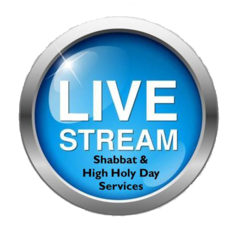 Watch StreamingShabbat and other Holiday Services