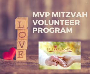 Mitzvah Volunteer Program