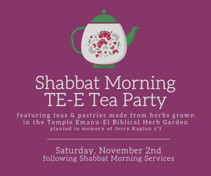 Banner Image for Shabbat Morning TE-E Tea Party