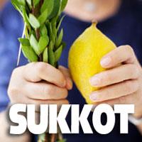 Banner Image for Sukkot Services