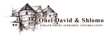 Logo for Ohel David & Shlomo