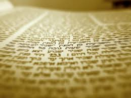 Banner Image for Pre-Shavuot Learning Project