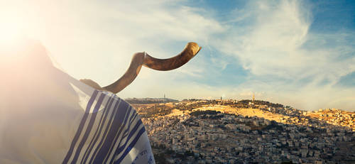 Banner Image for Method and Laws of Shofar Blowing - Class and Discussion with Rabbi Shafner
