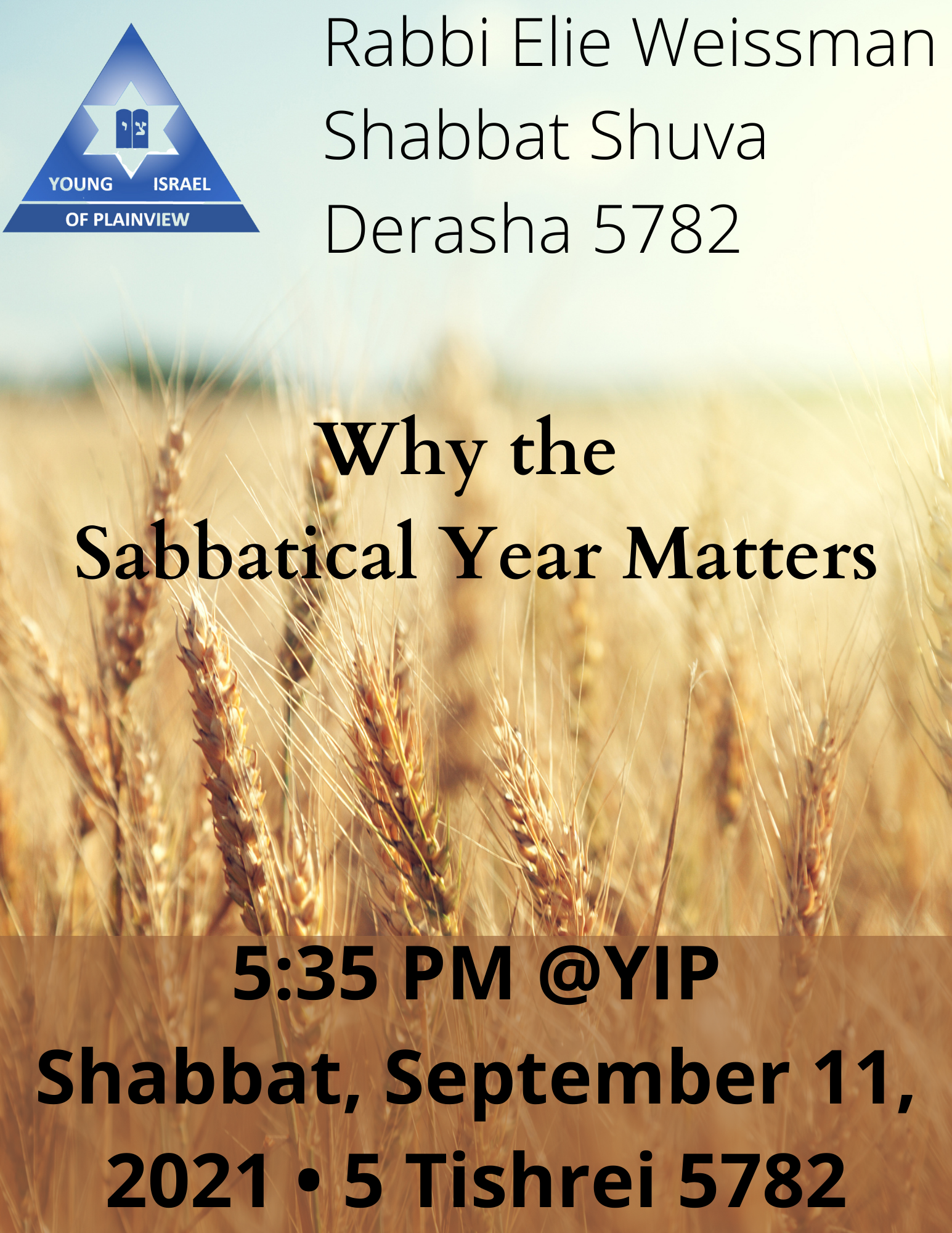 Banner Image for Shabbat Shuva Derasha