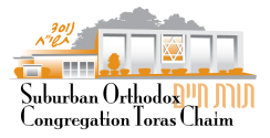Logo for Suburban Orthodox