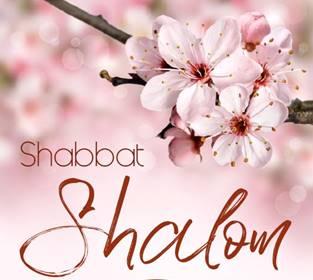 Pin by Susan Wessler Enbom on days | Shabbat shalom images, Shabbat shalom,  Shalom