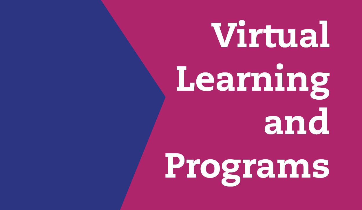 "<a href=""https://www.cbsteaneck.org/virtual-learning""