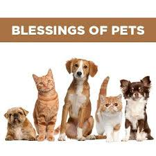 Banner Image for Blessing of the Pets Shabbat Evening Service