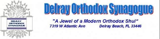 Logo for Delray Orthodox Synagogue