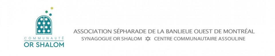 Logo for Or Shalom