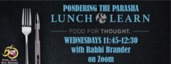 Banner Image for Pondering the Parasha Lunch & Learn
