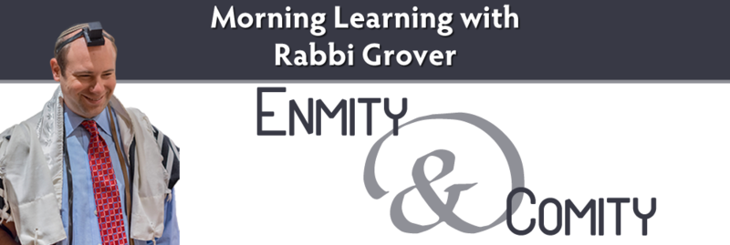 Banner Image for Morning Learning with Rabbi Grover: Enmity & Comity