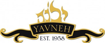 Logo for Yavneh Family Services