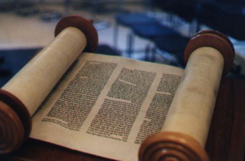 Banner Image for Torah TGIF
