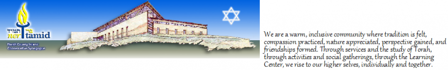Logo for Ner Tamid Synagogue