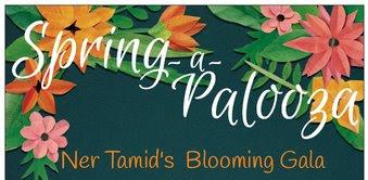 Banner Image for Ner Tamid Spring Gala!