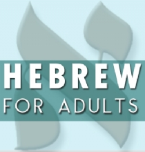 Intermediate Hebrew with Shai Avital