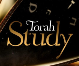 Torah Tuesdays