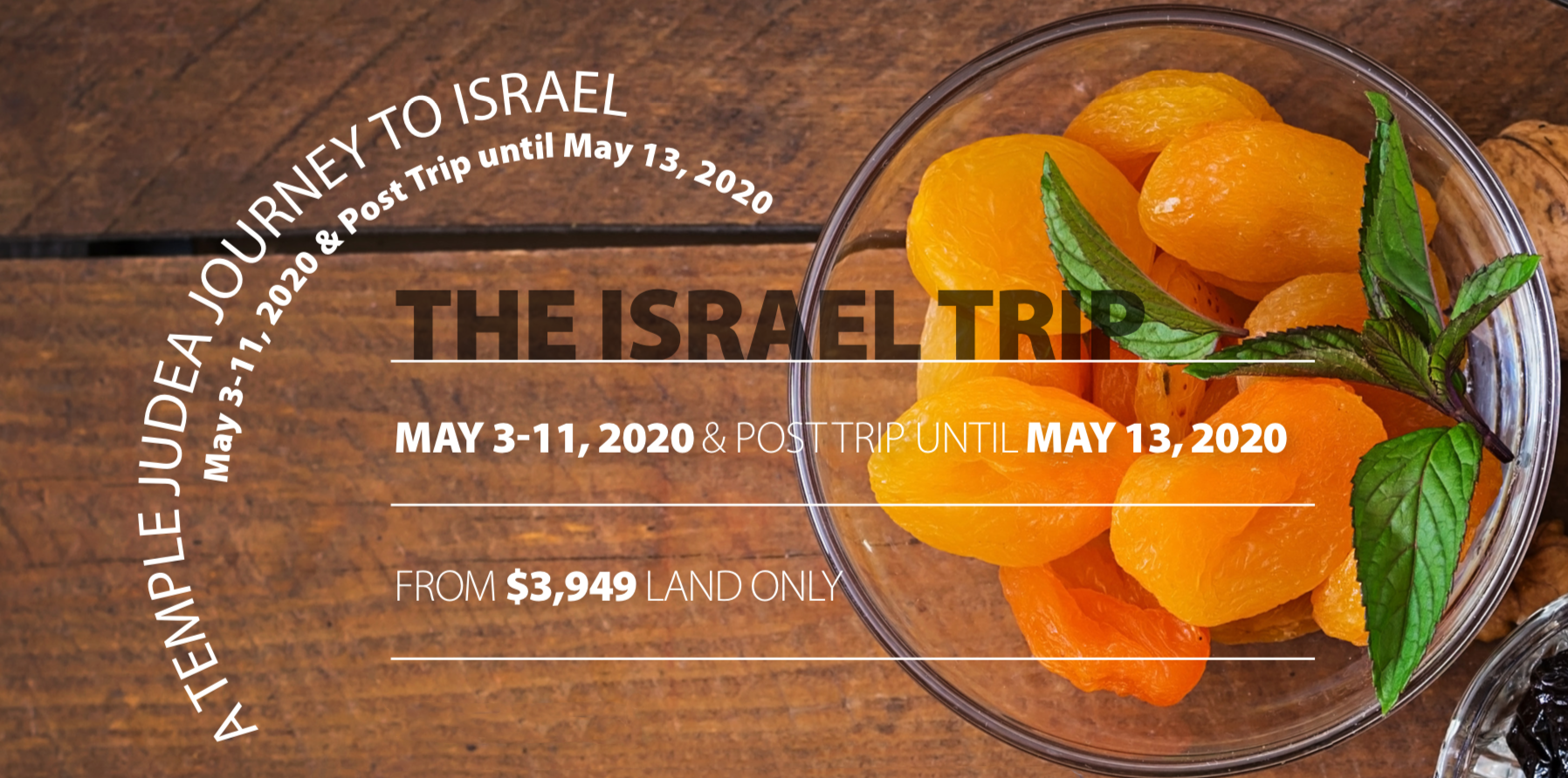 "<a href=""https://www.judeagables.org/theisraeltrip52020""
