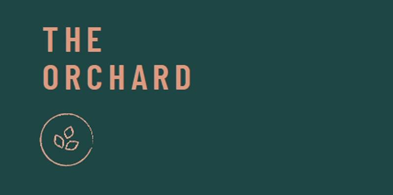 Banner Image for The Orchard: Young Adult Shabbat