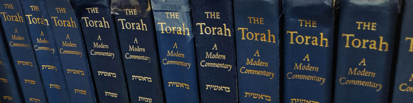 Banner Image for VIA ZOOM: Torah Study