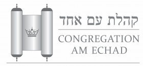Logo for Congregation Am Echad