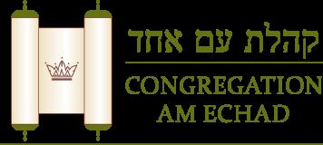 Logo for Congregation Am Echad